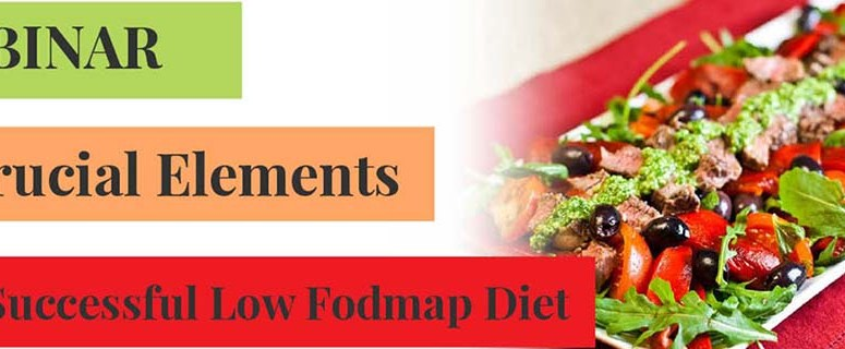 Free Webinar – 6 Crucial Elements for a Successful Low Fodmap Diet for IBS