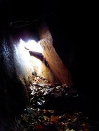 Inside-the-den