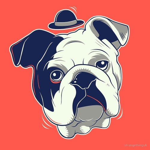 Bulldog Gentleman