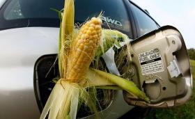 Energy - Corn in gas tank