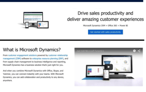 MS Dynamics advert 3