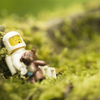 Outdoor toy photography with intention