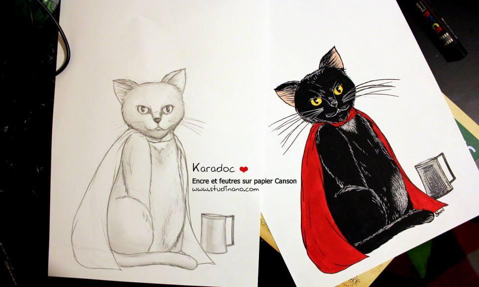 Karadoc le chat (work in progress)