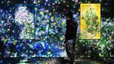 TeamLab, Flowers and People, Photographie de l'installation.