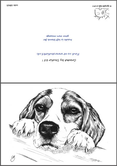 Begal greetings card studio 85 begal greetings card m4hsunfo
