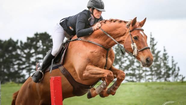 Vicki Wilson \ Showtym Cadet Eq pbu0027s Pinterest Horse - equine release form