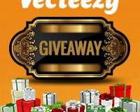 GiveAway-Vecteezy - Thumbnail