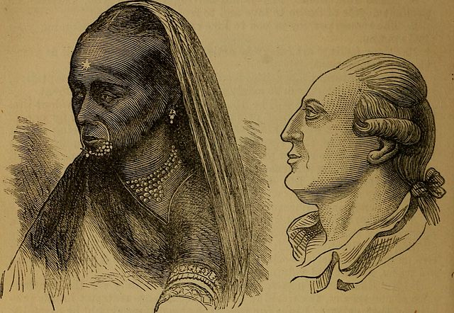 "Print in the sepia style of a native woman and a western gentleman. From the work ""An original and illustrated physiological and physiognomical chart (1873)"""