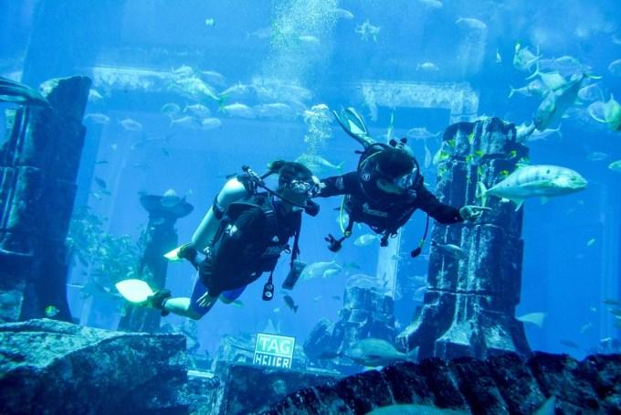 TagHeuer_AtlantisAquarium_022