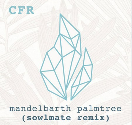 mandelbarth-palmtree-official-sowlmate-remix