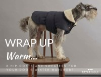 8 Stylish Designer Dog Coats and Sweaters