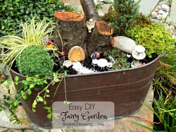 Small Of Diy Fairy Garden