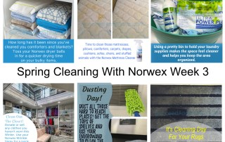 Spring Cleaing With Norwex Week 3