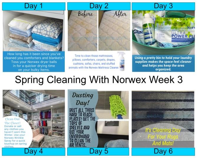 Spring Cleaing With Norwex Week 3