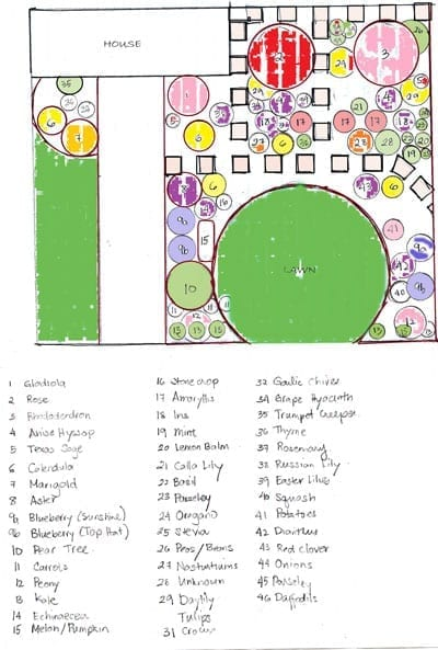 Front garden makeover a sgd reader 39 s plans for Successful garden design