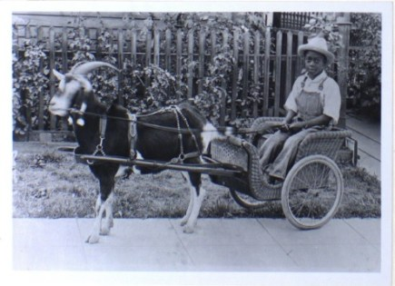 Terrell child with goat cart in River Street Neighborhood (nd)