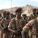 جيش السودان في اليمن