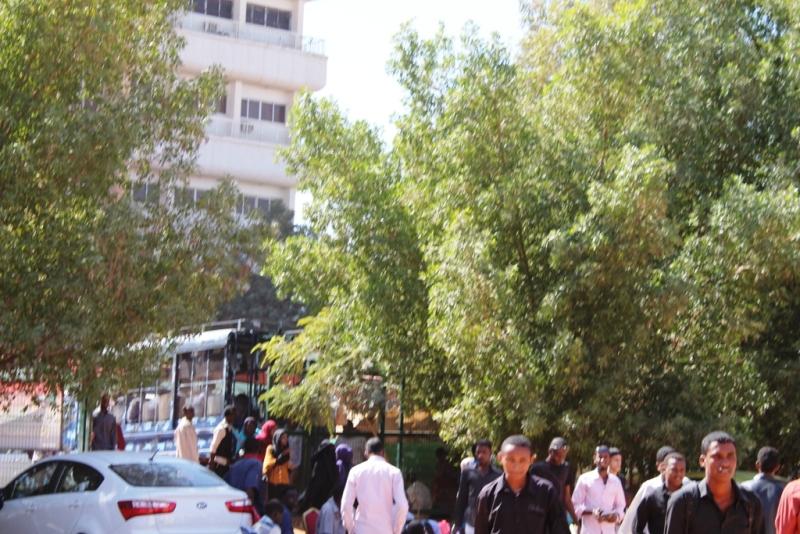 محمد وداعة : أرض جامعة النيلين .. حالة الهيئة النقابية !