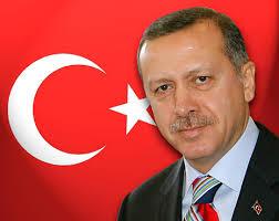 أردوغان: الصراصير نقلتني إلى قصري الجديد
