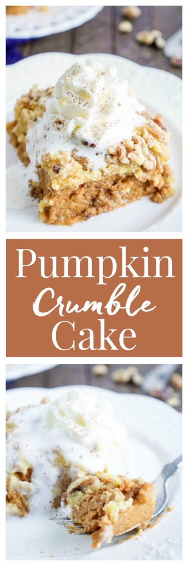 This Pumpkin Crumble Cake is the perfect alternative to pumpkin pie, this dessert's amazing layers will impress the whole family!