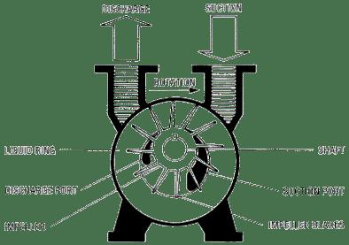 dressage ring diagram
