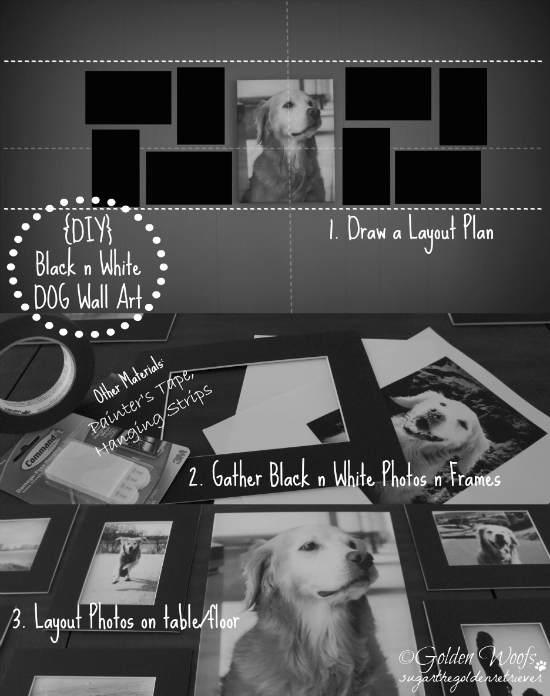 DIY Black n White Dog Wall Art: Sugar The Golden Retriever