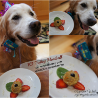 Barkday Meal Treat: Rachael Ray's K9 MeatBalls