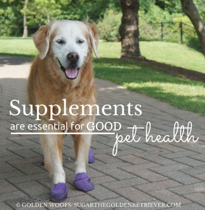 Supplements GOOD for PetHealth