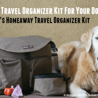 Essential Travel Organizer Kit For Your Dog #Solvit