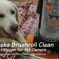 Eureka Brushroll Clean Vacuum for Pet Owners