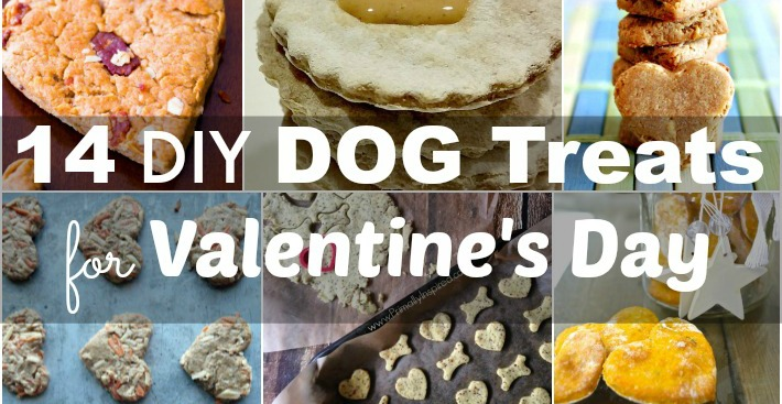 14 DIY Dog Treats for Valentine's Day