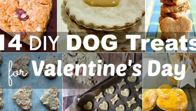 14 DIY Dog Treats for Valentine's Day