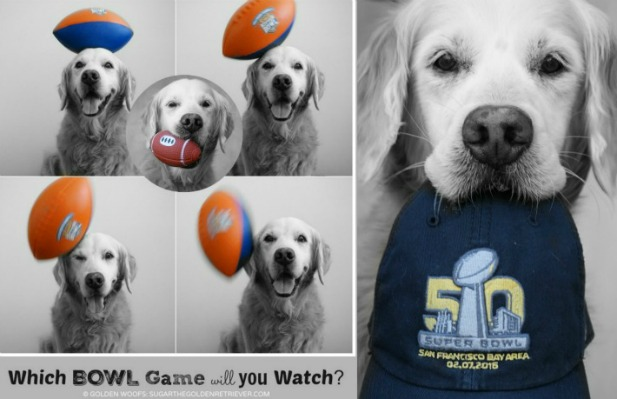 Which Bowl Game Will You Watch?