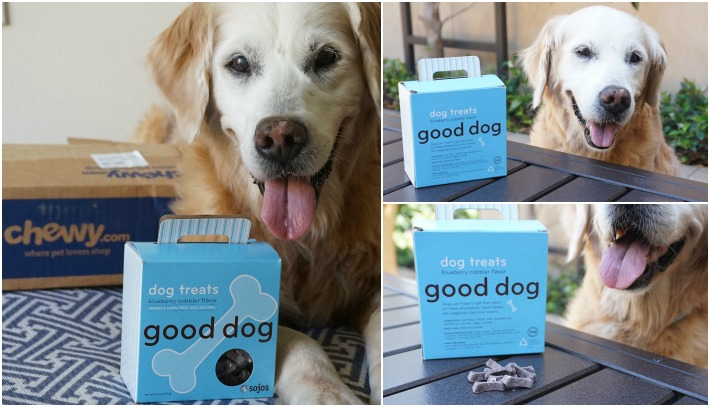 A Good Dog Deserves Dog Treats from Chewy.com #ChewyInfluencer