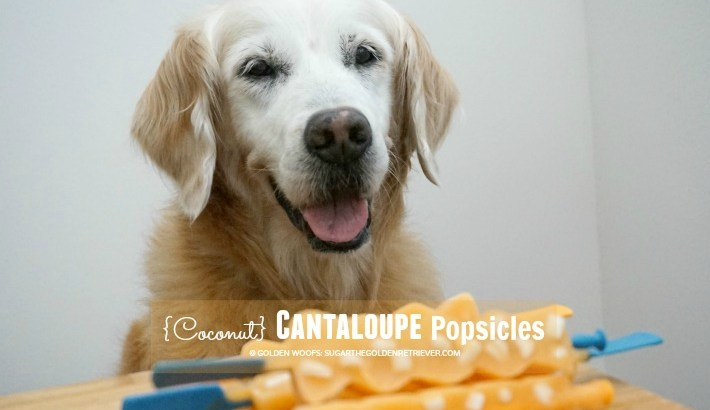 Refreshing TREAT {Coconut} Cantaloupe Popsicles