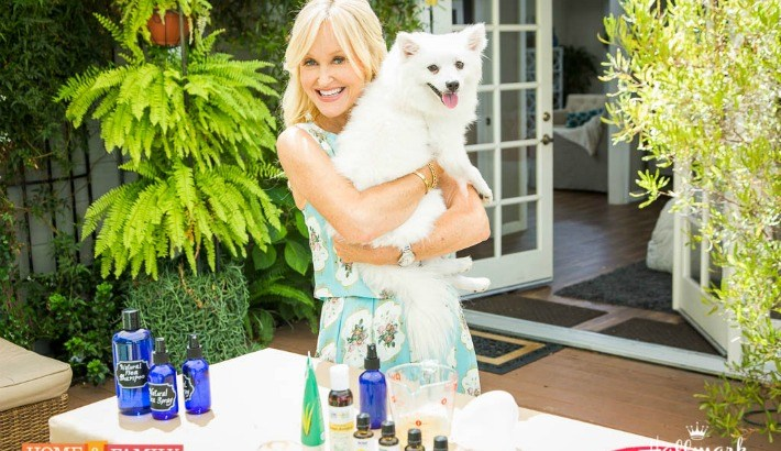DIY Natural Dog Flea Solutions | Hallmark Channel Home & Family