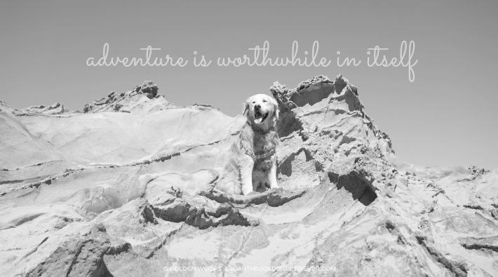 Worthwhile Adventure