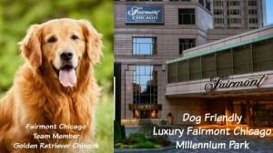 Dog Friendly Luxury Fairmont Chicago Millennium Park