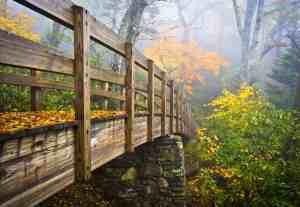 Autumn Appalachian Hiking Trail Foggy Nature Blue Ridge Fall Foliage Bridge near Grandfather Mountain