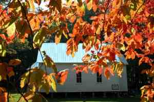 cades cove church autumn