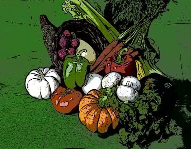 etched-thanksgiving-cornucopia
