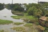 ময়ূর নদীর অবৈধ দখল উচ্ছেদের আহবান