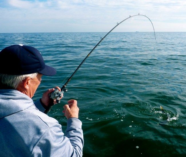 Beach and surf fishing gear and tackle for Surf fishing gear