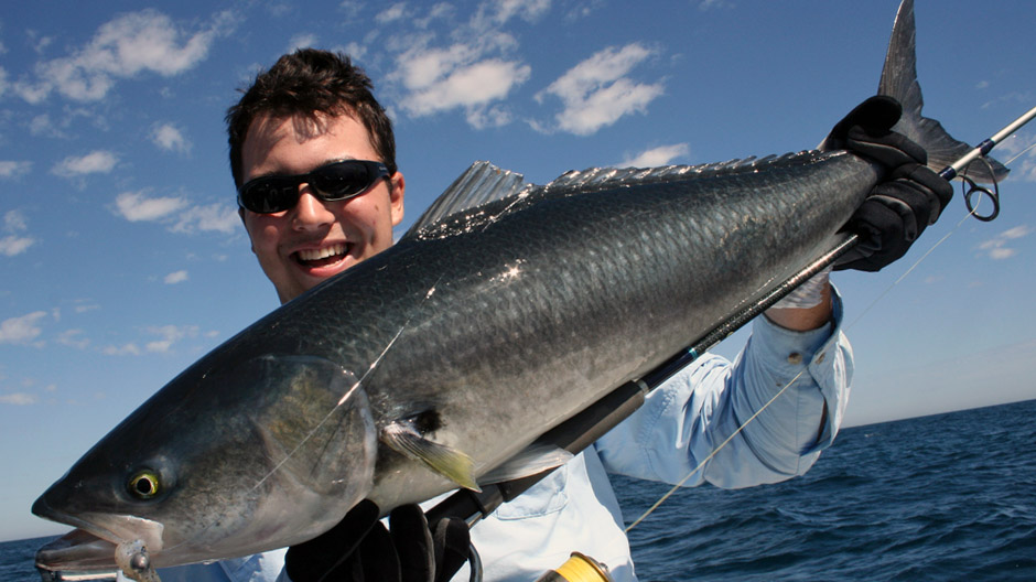 Size and bag limits Tidal waters