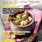 LCHF-magasinet 2016-3