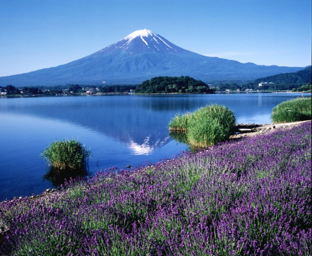 Top cheap places to go around Fuji