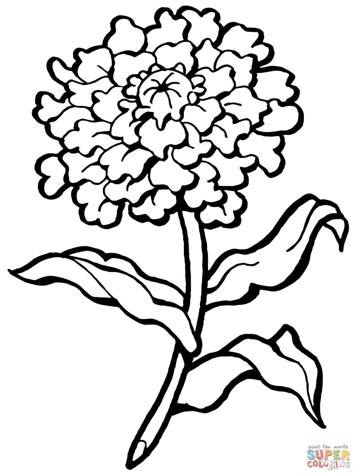 Click the carnation flower coloring pages to view printable