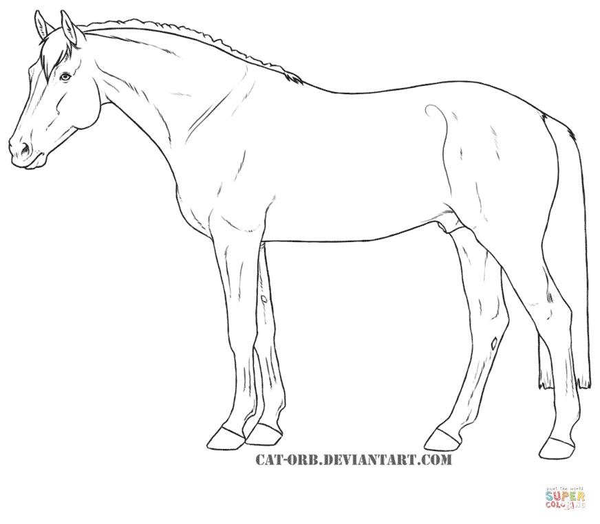 hanoverian horse diagram