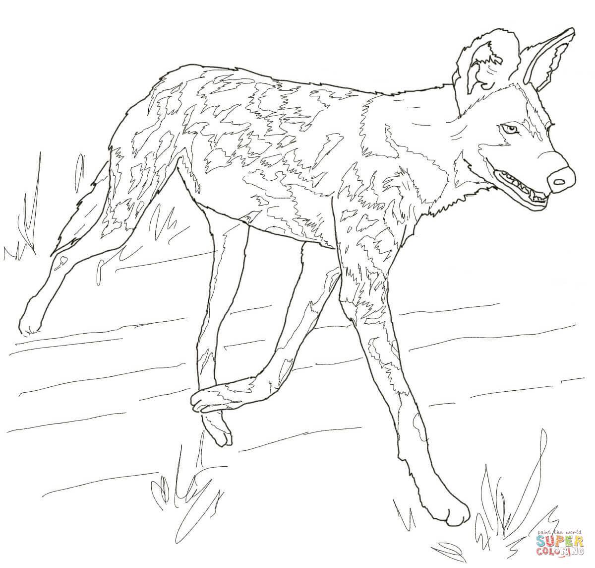 wild dog coloring pages eskayalitim