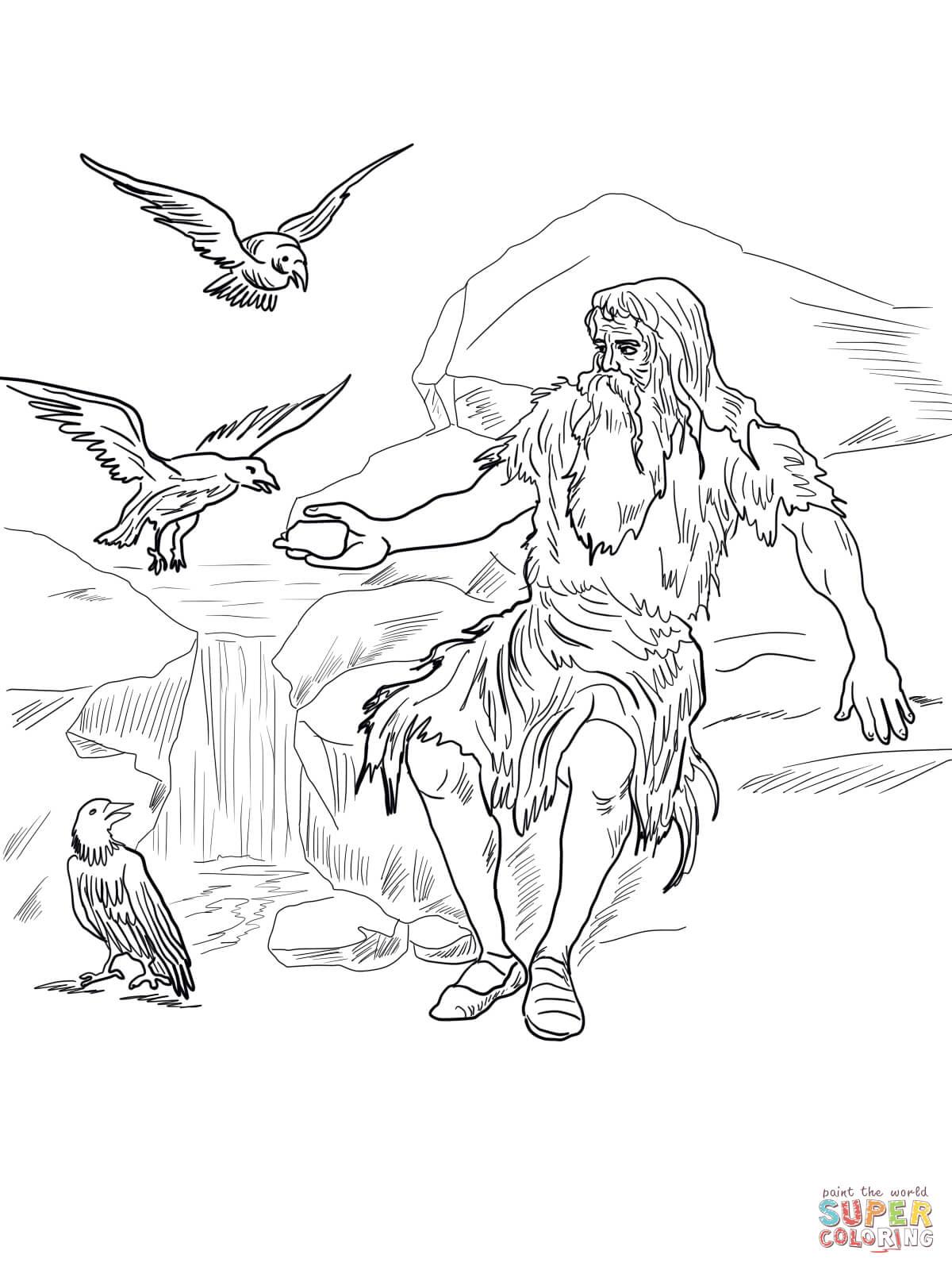 Birds feed elijah